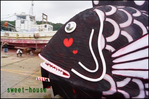 DSC07584 黒鯛