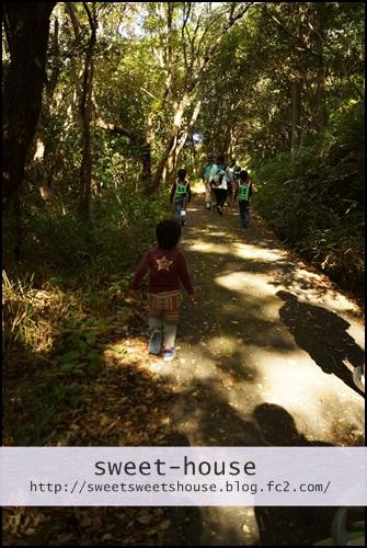 ハイキング トトロの森
