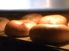 プレーン&チーズ入りベーグル焼成中