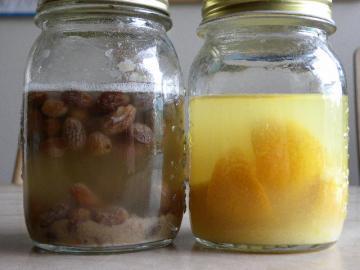 レーズン&デコポン酵母