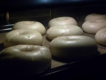 デコポン酵母ベーグル焼成中