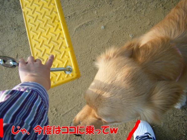 DSCF0054.jpg