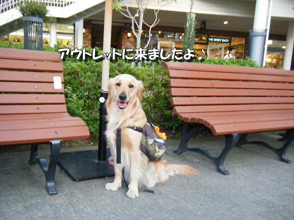 DSCF3001_20100518003156.jpg