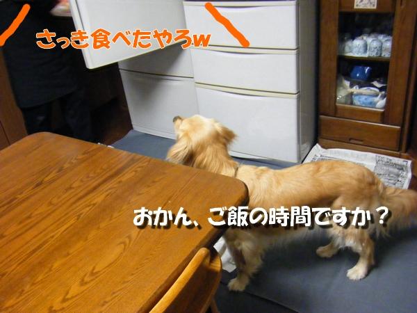 DSCF6021_20100523232353.jpg