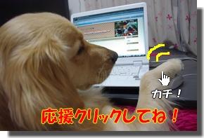 IMGP4194-1.jpg