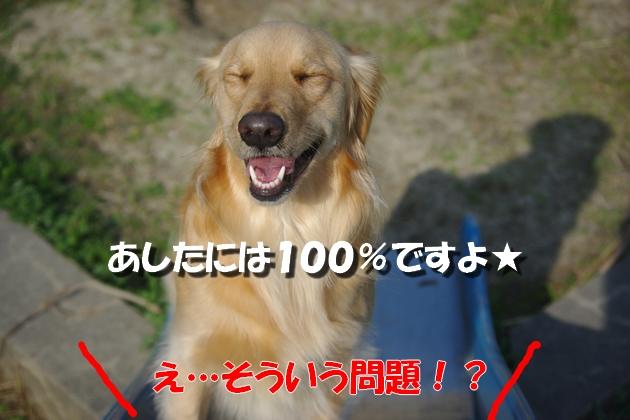 IMGP9274.jpg