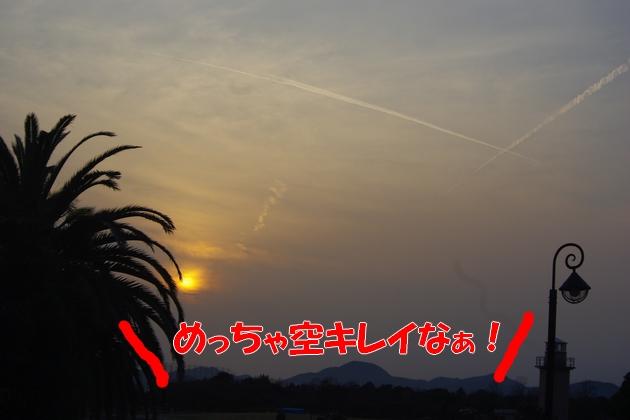 IMGP9871_20100320121847.jpg