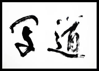 syadou2010
