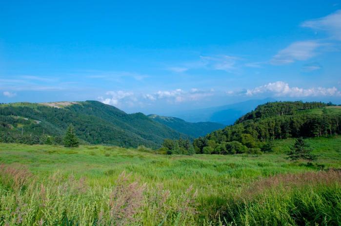 美ヶ原高原の景色002