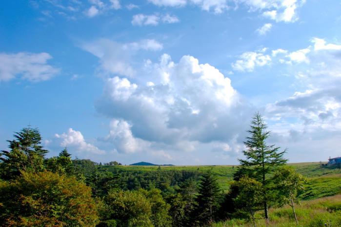 美ヶ原高原の景色003