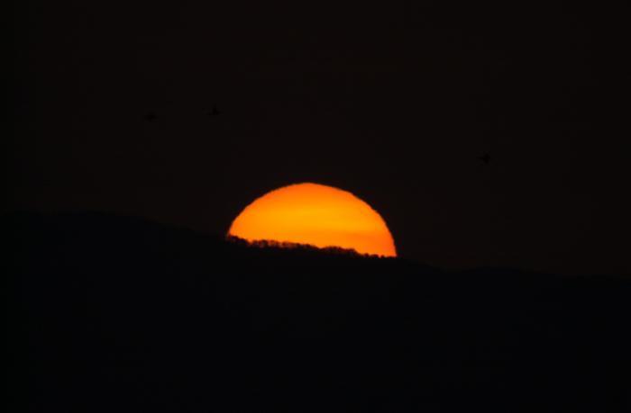 オレンジ色に染まる太陽・日の出