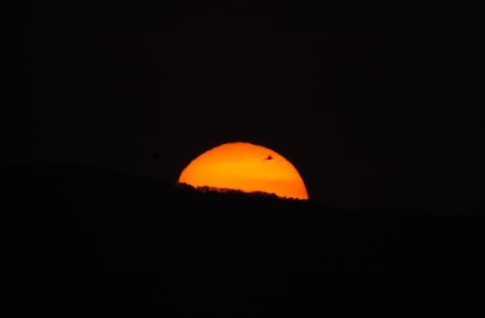 半分ほど顔を出した太陽(日の出)