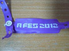 A FES 2012