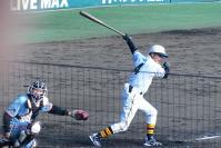 029川藤