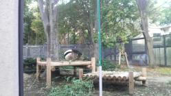 P1000121.jpg