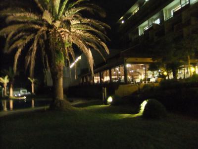 400夜の庭園DSCF5890