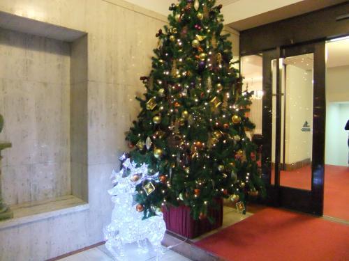 500クリスマスツリーDSCF7853