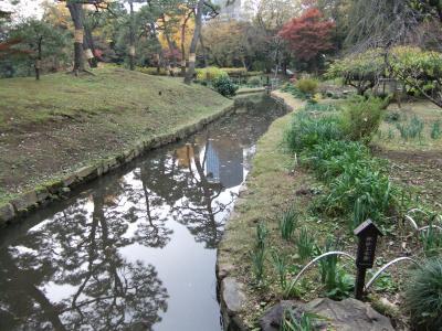 400神田上水路DSCF7614