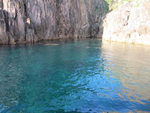 水が綺麗IMG_0207