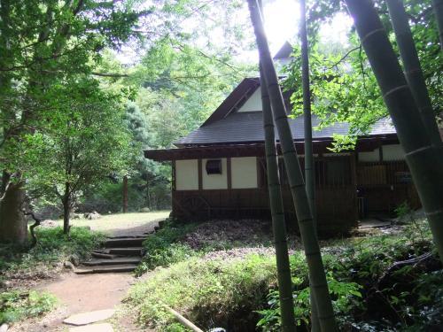 建物と竹DSCF8085