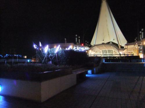 500夜景帆DSCF8135