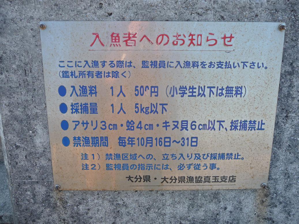 P1160327.jpg