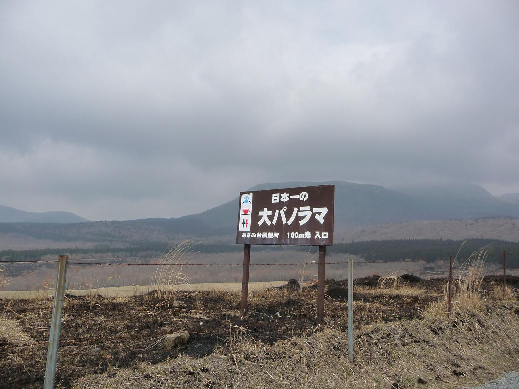 P1170664.jpg