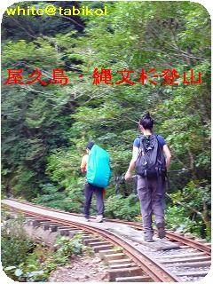 200910屋久島トレッキング