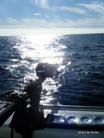 20111112光海面