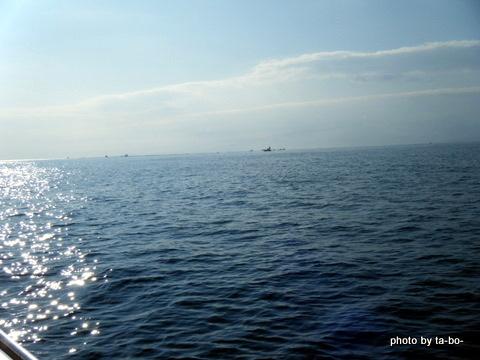 20111123景色
