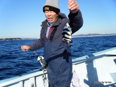20111210KOBIさん