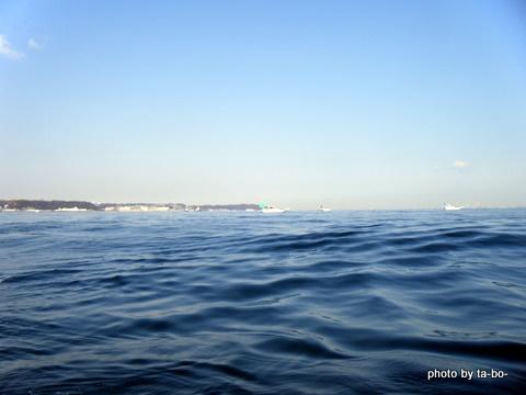 20120210久里浜ピーカン