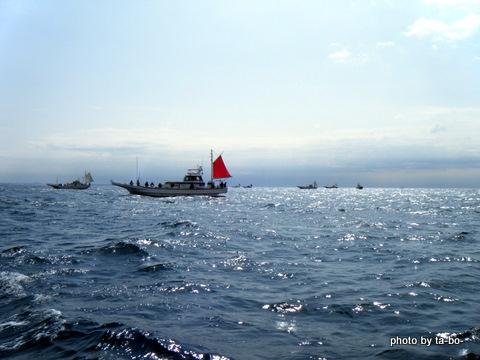 20120319マルイカ船団