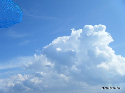 20120908夏の空