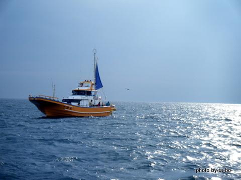 20121130本日の釣果