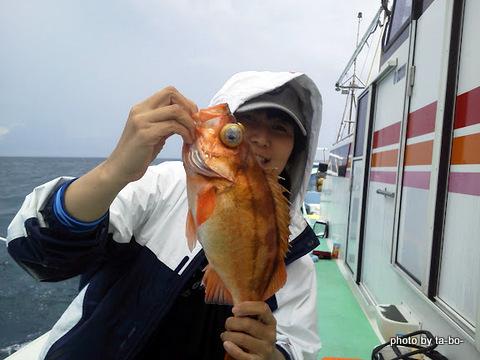 20120915rubyさんオキメバル