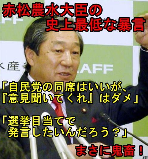 akamatsu3.jpg
