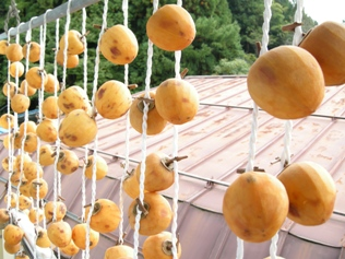 2010 干し柿
