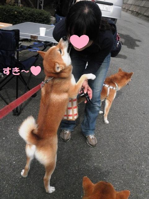 すき~~!