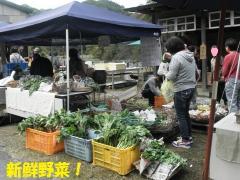 新鮮野菜!!