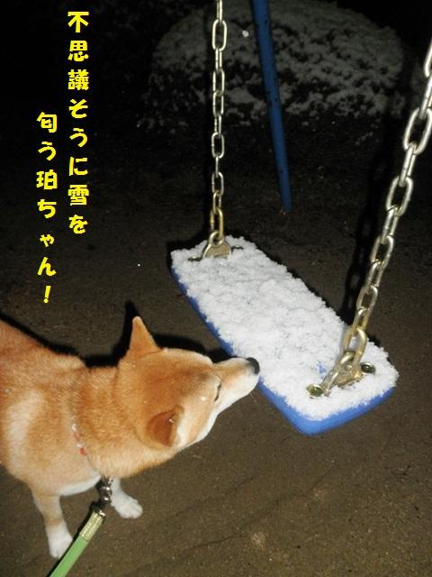 雪だね~!