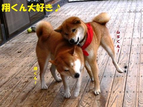 翔くん好き~!