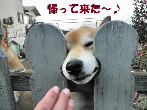 帰って来た~~!