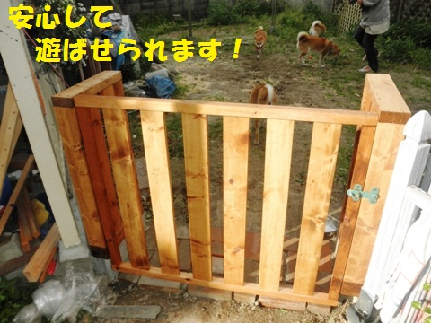 門がしっかり安心して遊べるね