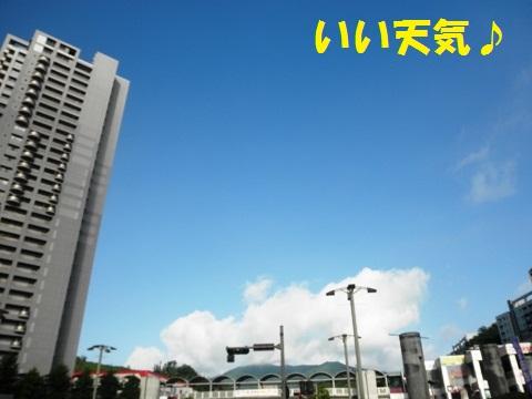 いい天気!