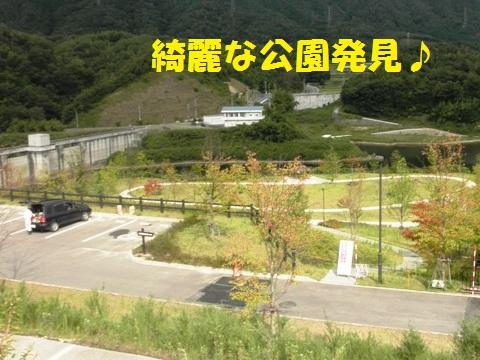 綺麗な公園