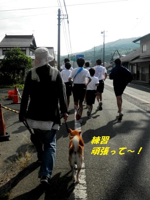 練習がんばれ~!