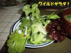 ワイルドサラダ