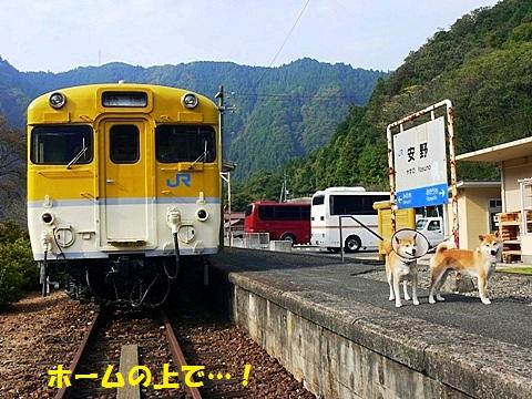 汽車と-001