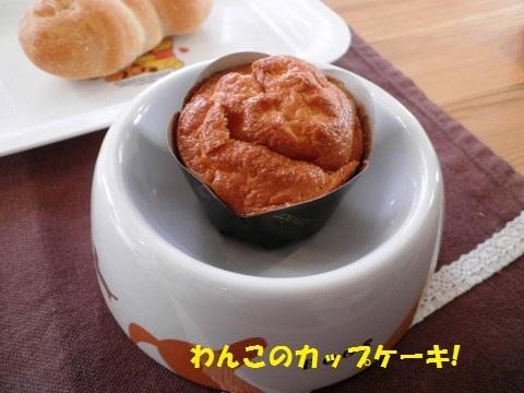 わんこパン②